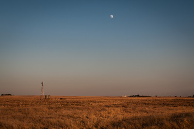 Moon over Field